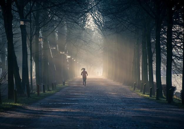 Horizontale opname van een pad in een boompark met een vrouw in een rood trainingspak op het pad