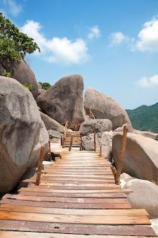 Horizontale swimming thailand tropisch caraïbisch
