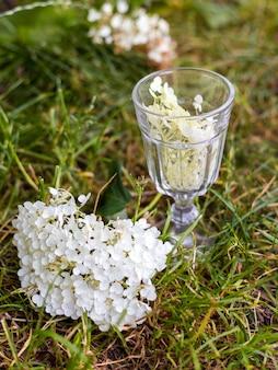 Hortensia plant met glas, bruiloft concept, webbanner, natuur achtergrond.