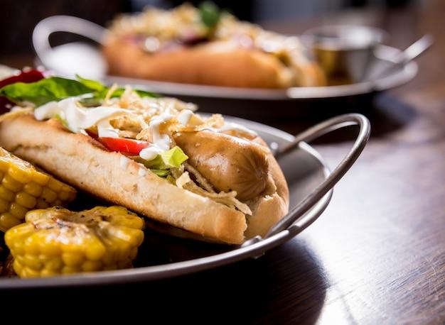 Hotdogs en frietjes op een gerechten. fast food maaltijd. restaurant.