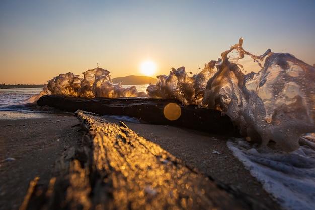 Hout in de zeegolfbeweging of strand aan de ochtendschemering