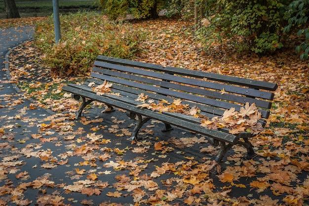 Houten bank in het binnen de herfstpark terwijl daling.