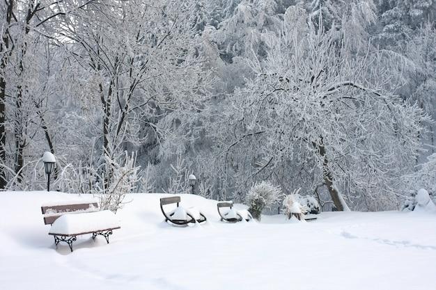 Houten banken bedekt met sneeuw in de buurt van de bomen op de met sneeuw bedekte grond