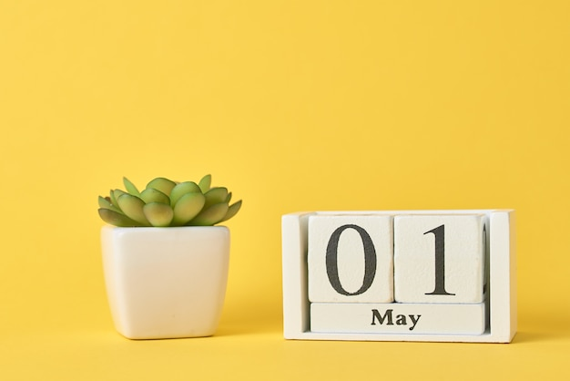 Houten blokkalender en vetplant