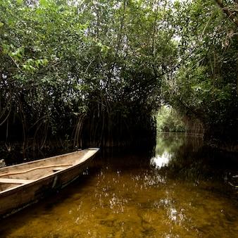 Houten boot in een tropische rivier