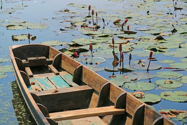 Houten boot op een vijver vol met lotusbloemknoppen en bladeren