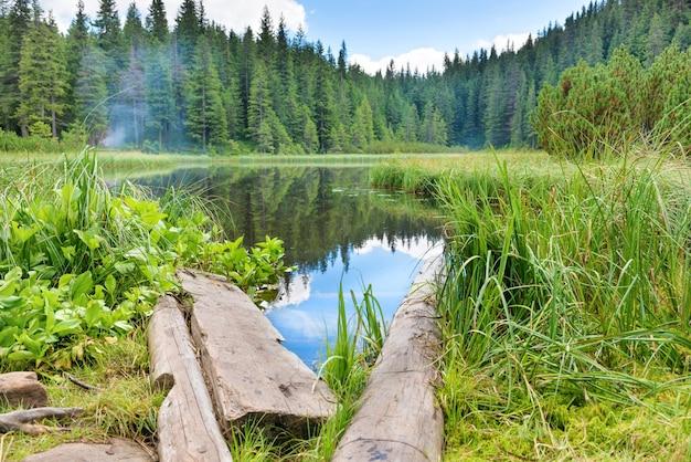 Houten brug in blauw water bij een bosmeer met pijnbomen