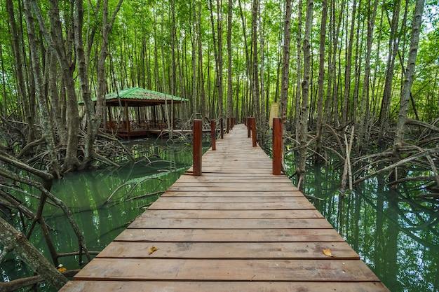 Houten brug in een mangrovebos bij tung prong-leren riem, rayong, thailand