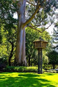 Houten duiventil in zomerpark, spanje