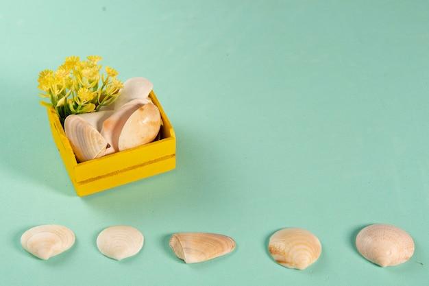 Houten gele doos met schelpen en bloemen die de zomer symboliseren op een groene achtergrond