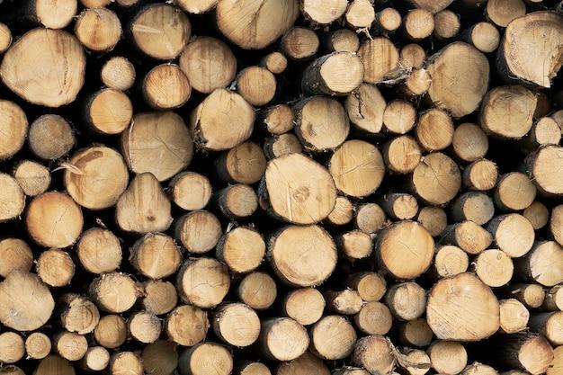 Houten gesneden logboeken achtergrond. stapel logboeken. stapel brandhout close-up. gezaagde boomstammen van verschillende diameters