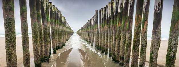 Houten golfbrekende installaties in de noordzee, zeeland, nederland