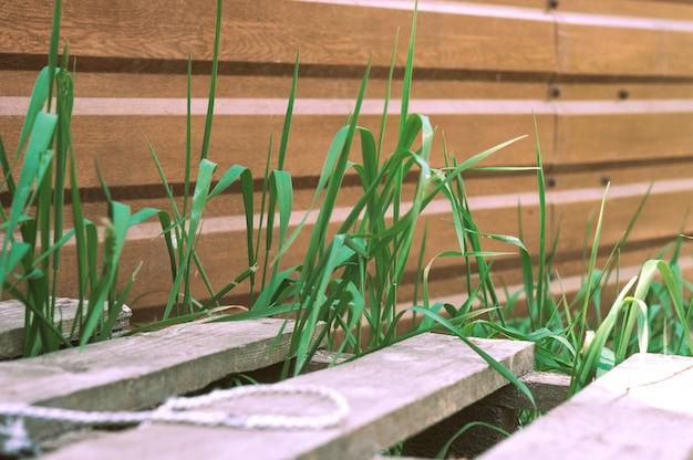 Houten hek, pallet en fris groen gras. houten hek met groen gras eronder.