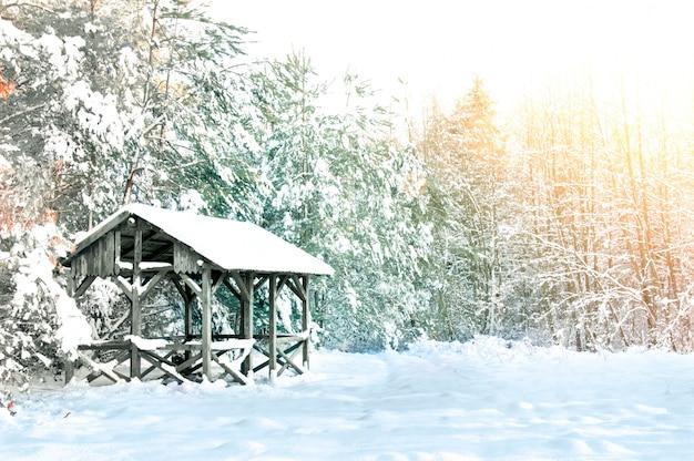 Houten huis bedekt met sneeuw