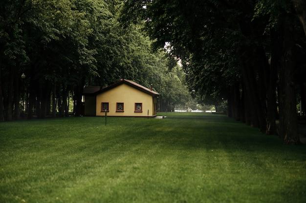 Houten huis op gazon in zomerpark in regenachtige dag, niemand. huisje op weiland, rustige plek, wonderland, bouwen in sprookjesachtig woord