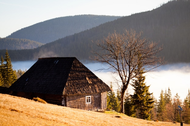Houten huis tussen de bomen bedekt heuvels