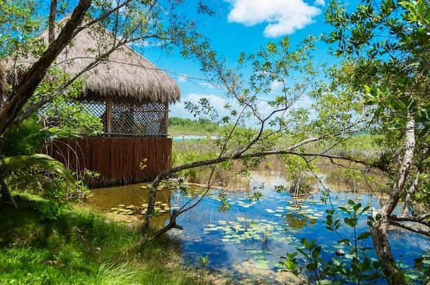 Houten huisje met rieten dak gelegen aan het meer. bacalar, quintana roo, mexico