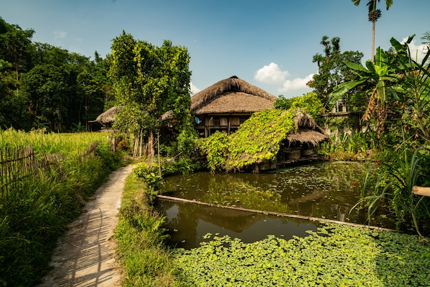 Houten hut in de buurt van een vuile meer in een boom bos