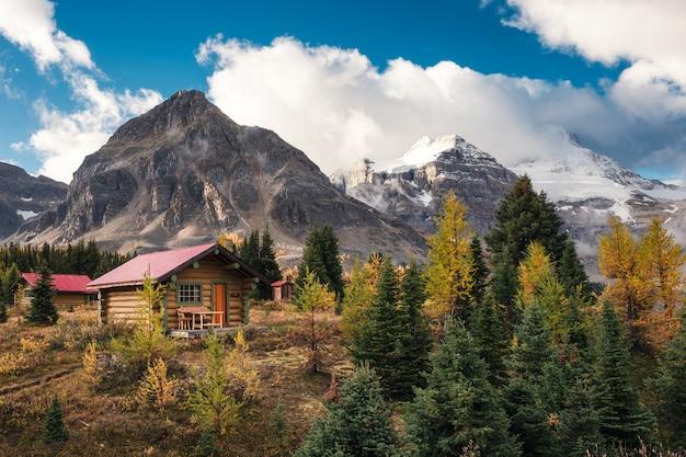 Houten hutten in canadese rotsachtige bergen in het provinciale park van assiniboine