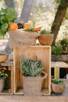 Houten kist met bloempotten en groenten op een achtergrond van bomen
