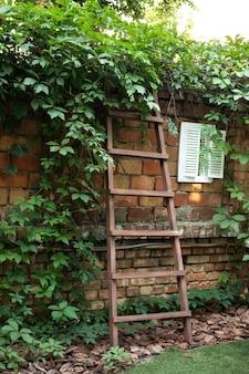 Houten ladder aan muur met wilde druiven tuinladder tegen bakstenen muur voorbereidingen voor oogst