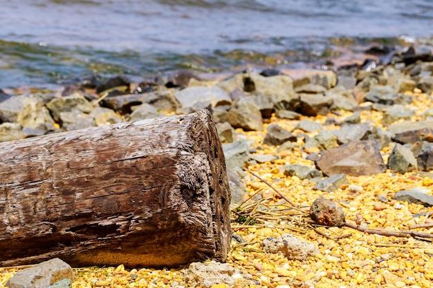 Houten logboek aangespoeld op zand van de kust