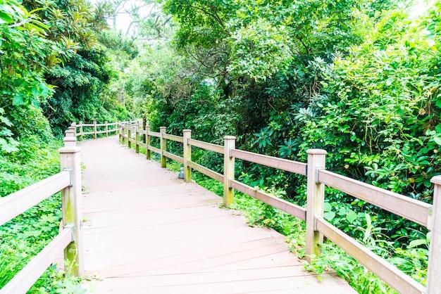 Houten loopbrug in seaseom park op het eiland jeju
