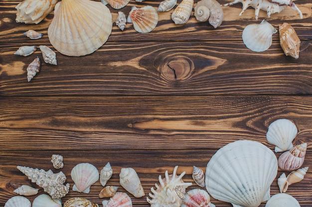 Houten oppervlak met decoratieve zeeschelpen