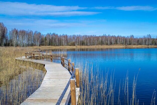 Houten pad langs het meer. oever van het meer, riet en pad. steengroeve in olaine, letland