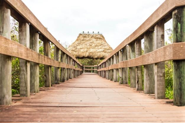 Houten pad op moeras in everglades, florida