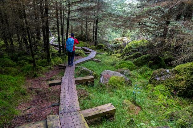 Houten pad op wicklow-manier met een excursionistisch meisje.
