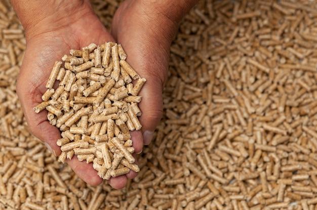 Houten pellets in handen.