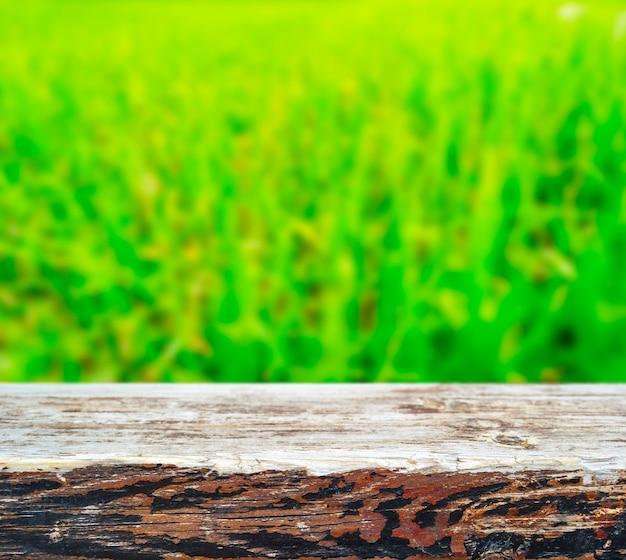 Houten plank over groen gras
