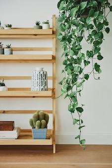 Houten plantenplank met gemengde planten