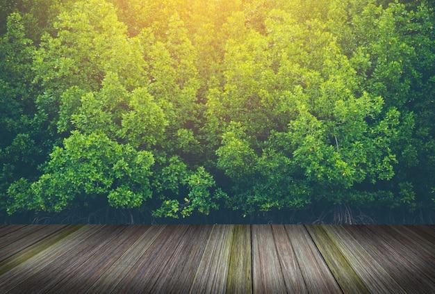 Houten platform naast de tropische regenwouden in thailand