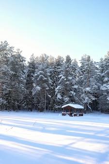 Houten prieel in het bos in de winter zonnige dag