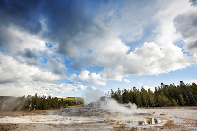 Houten promenade langs geiser velden in yellowstone national park, verenigde staten