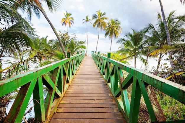 Houten promenade op het tropische strand in costa rica, midden-amerika