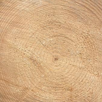 Houten ringen textuur