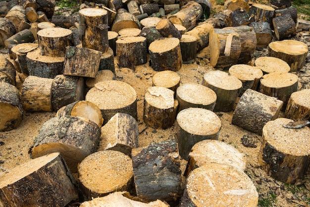 Houten stammen van eikenboom en zaagsel in de buurt van zagerij
