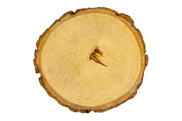 Houten stomp, ronde versneden boomtextuurberk, witte geïsoleerde achtergrond