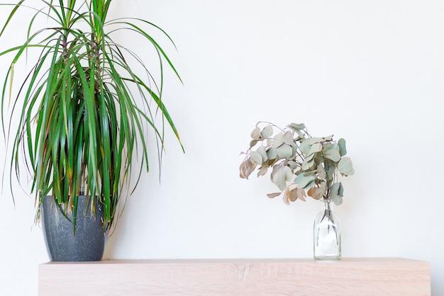 Houten tafel met groene dracaena kamerplant in een pot en droge eucalyptus plant in een glazen fles