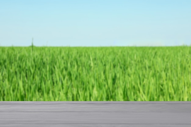 Houten tafel tegen veld. landbouw concept. mockup