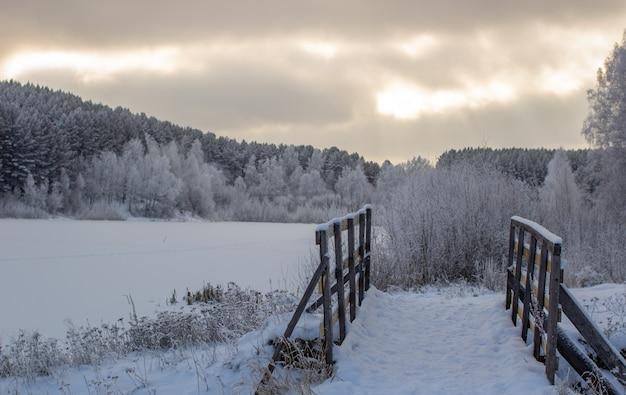 Houten toegang tot het bos bij het bevroren meer bij het bos, allemaal bedekt met sneeuw