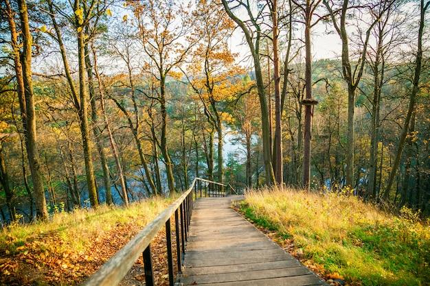 Houten trap in het regionale park in de herfst