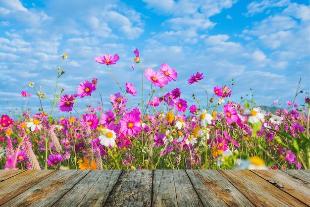 Houten vloer op de kosmos bloem van grasland