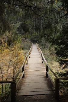 Houten voetgangersbrug met leuningen in het bos, de zomertijd. toeristische attractie, toeristische bestemming