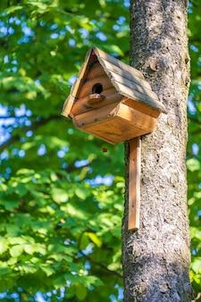 Houten vogelhuisje op een boom in het bos en park, close-up. kiev, oekraïne