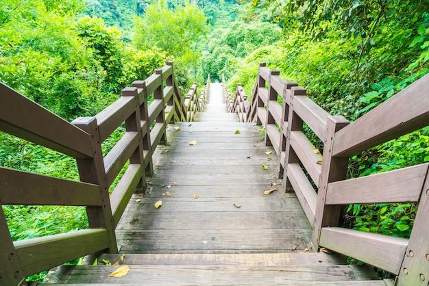 Houten wandelpad in de tuin bij cheonjeyeon falls, jeju island