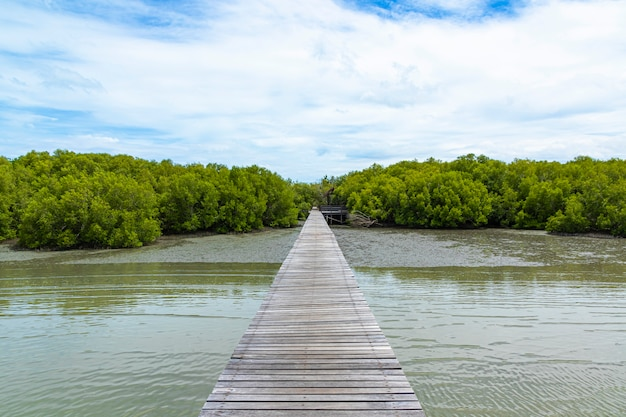 Houten weg op het overzees aan mangrove bos en blauwe hemel